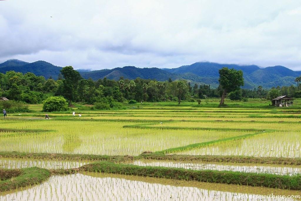 Thailand_008