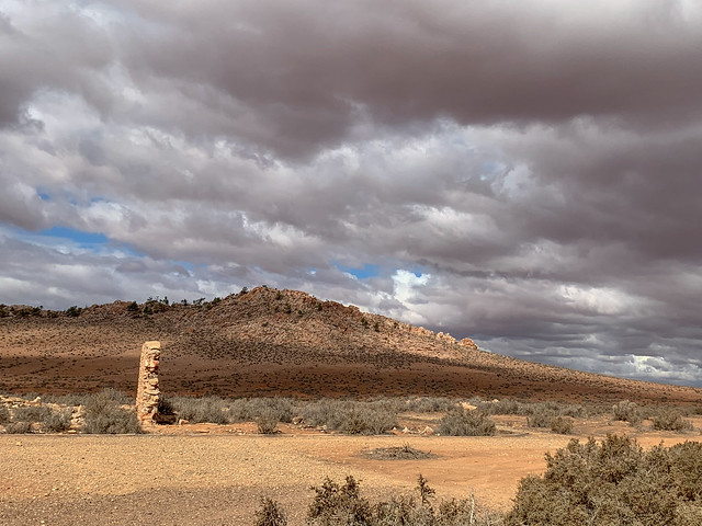Near Hawker, Flinders Ranges