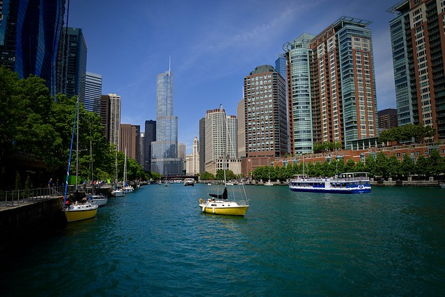 A Busy Day On The Chicago River - Chicago IL