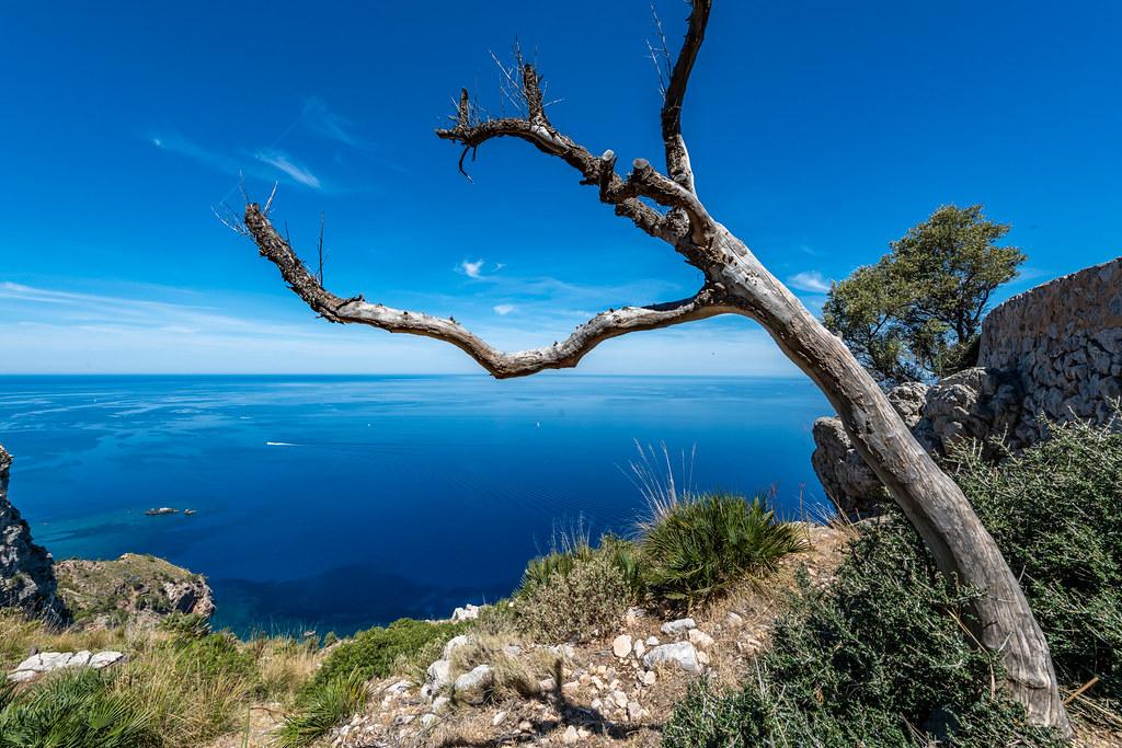 Mallorca - Tramuntana Gebirge - 0727
