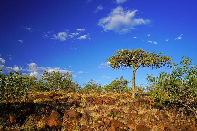Grootberg Plateau, Namibia