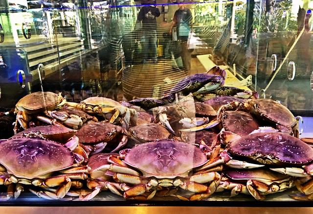 Crabby Creatures