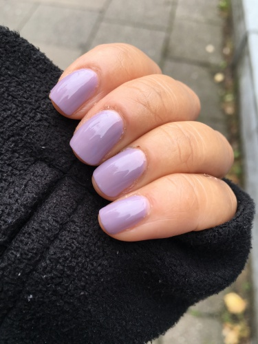 purpleray709 5