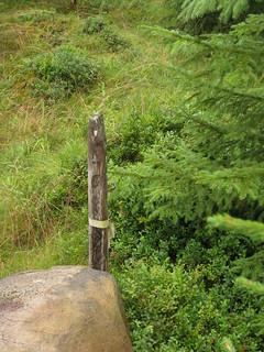 Wood pole boundary marker