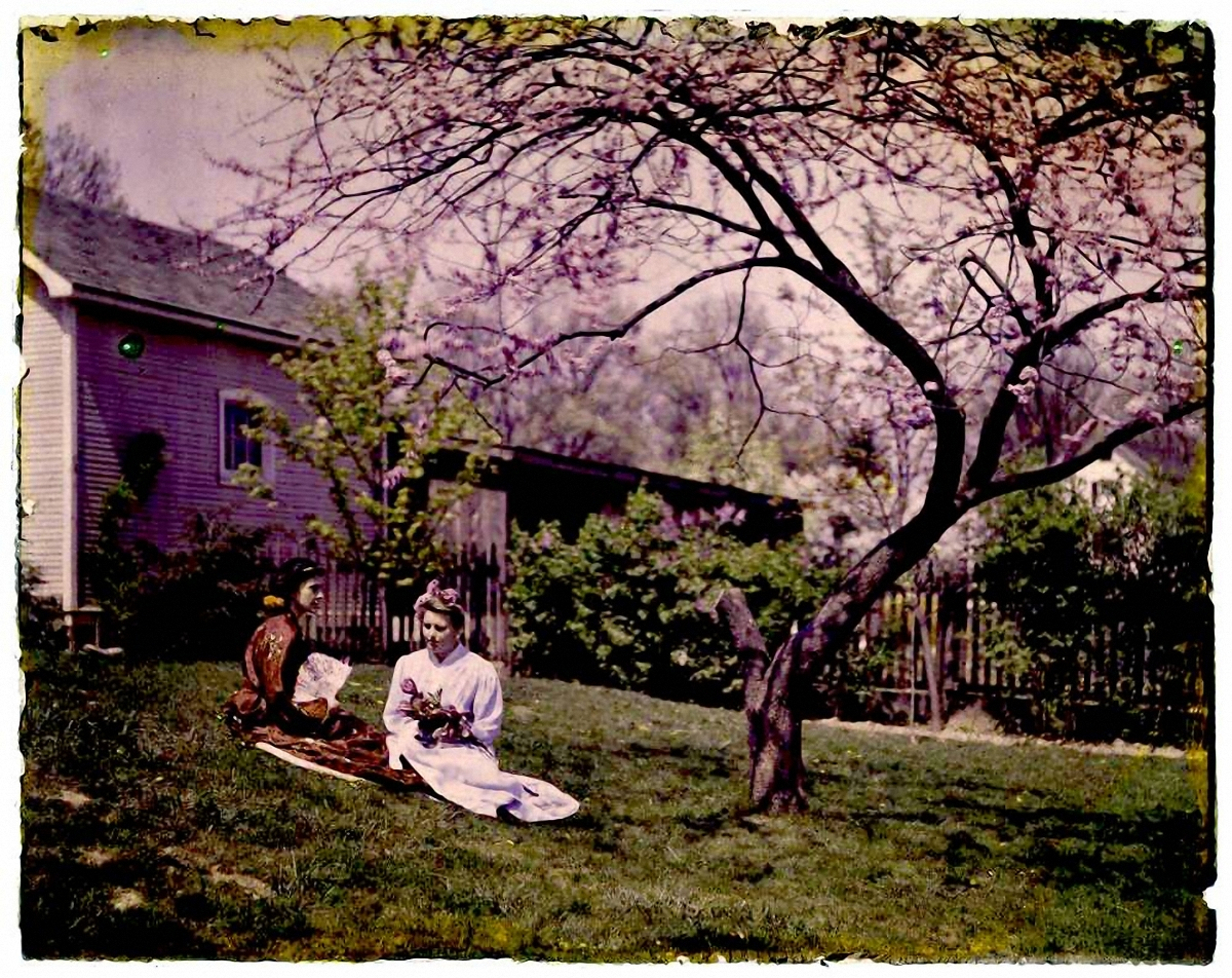 1915.  Женщины под вишней