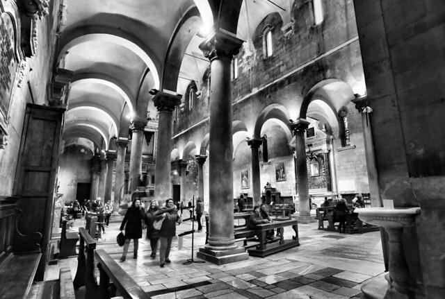 Among the Columns