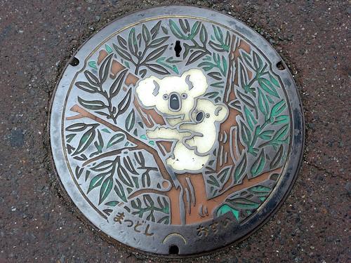 Matsudo Chiba, manhole cover (千葉県松戸市のマンホール)