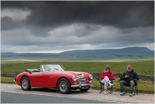 "The ""Joy Of Motoring"" Is a Picnic with your Austin Healey"