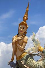 Kampot_8903