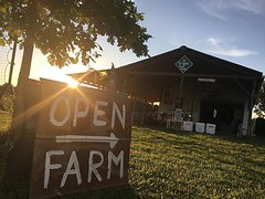 Living the #goodlife #farmlife #farmstore #familyfarm #triplejfarmsc