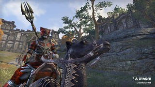Share of the Week - The Elder Scrolls Online | by PlayStation.Blog