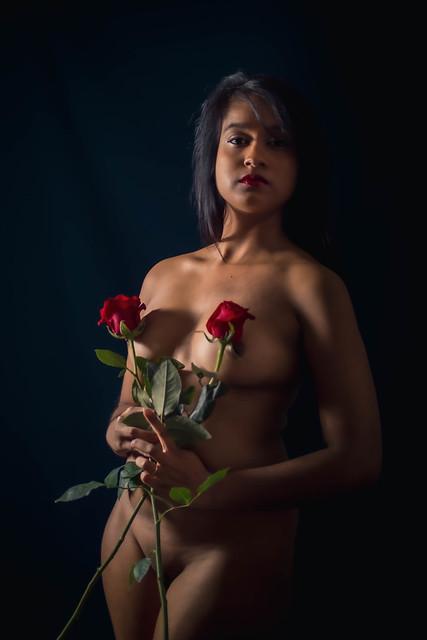 Mélusine roses 1