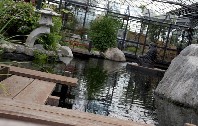 de watertuin Naaldwijk geeft een combinatie van hout, water, steen en planten
