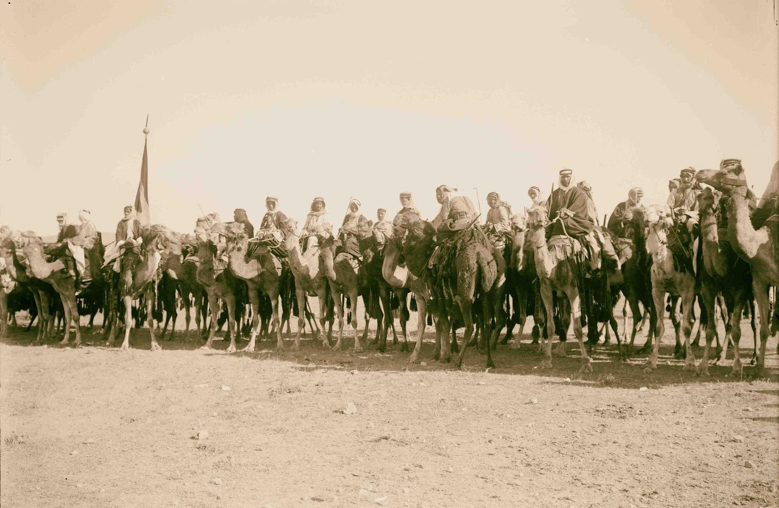 16. Телохранители эмира на верблюдах
