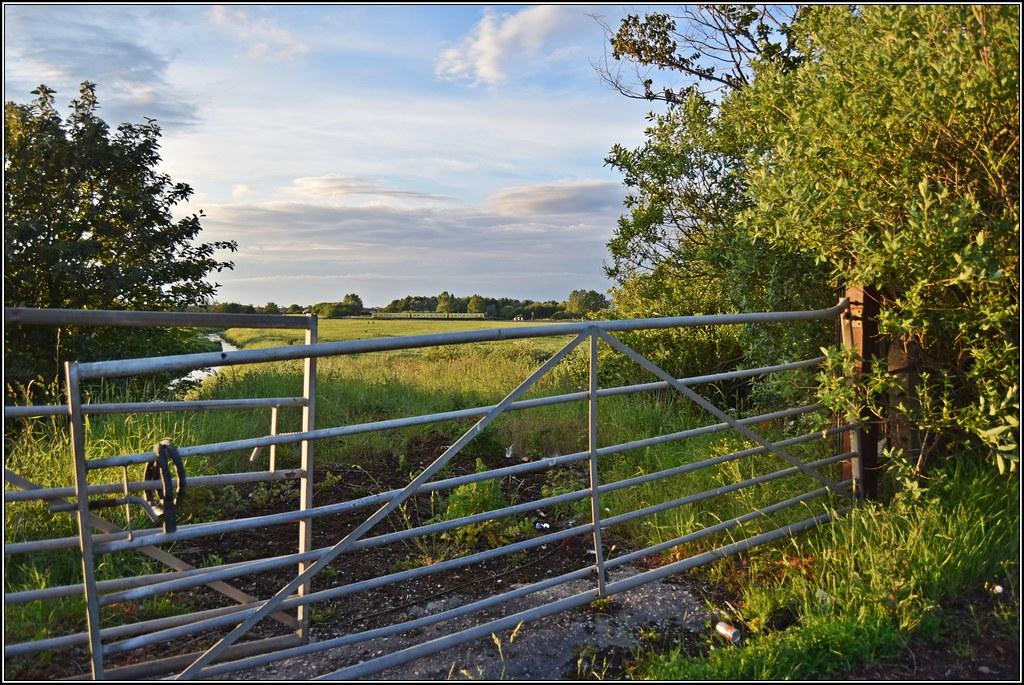 Meadows and farmland by Colin Partington