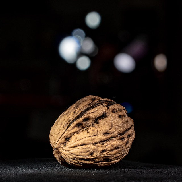 Just a humble walnut .... but all the way from Angoisse , France !