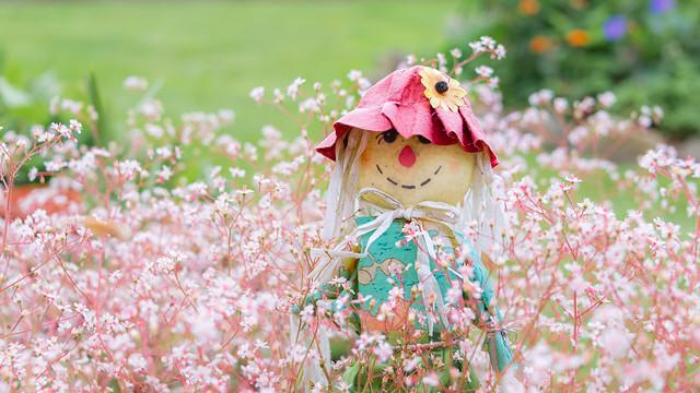 Novelty Scarecrow