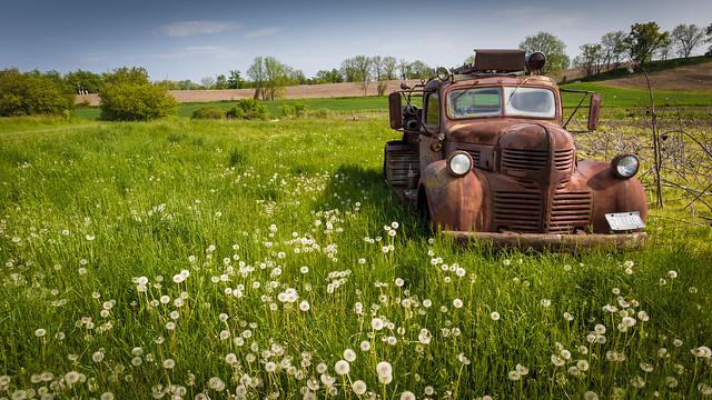 Old Truck in Field