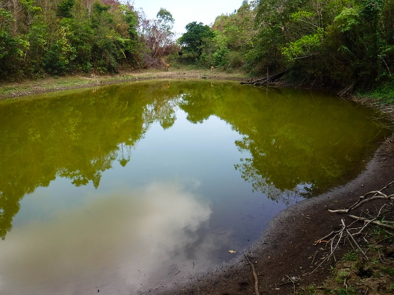 Dinawan Lake