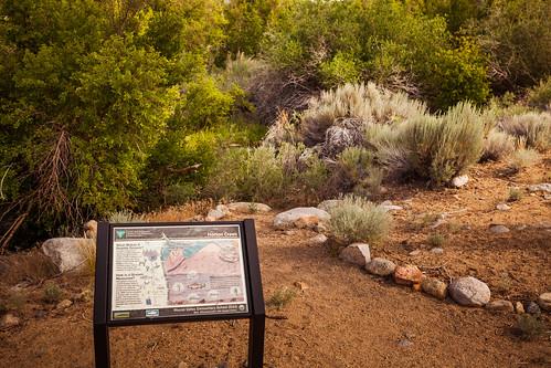 Horton Creek Nature Trail