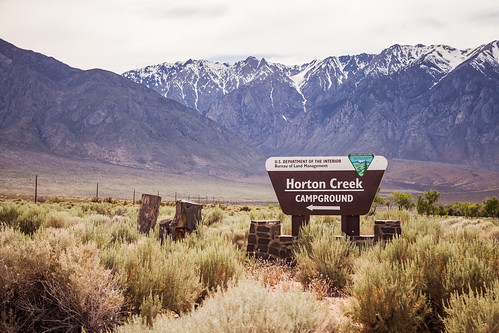 Horton Creek sign