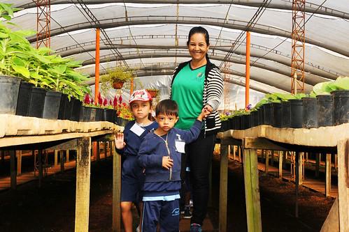 Viveiros da Novacap incentivam crianças à educação ambiental