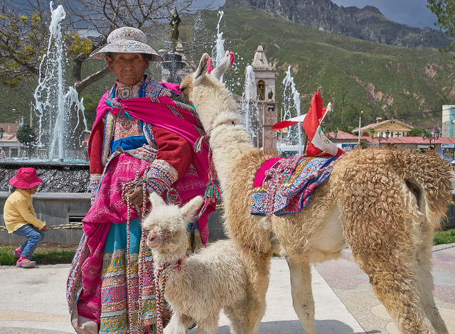 Old Lady and the Alpacas - Chivay, Peru