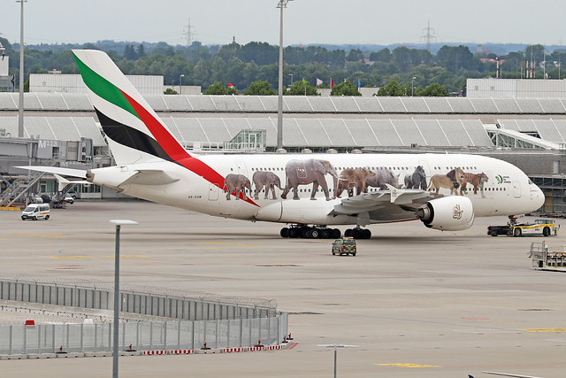 A6-EOM  -  Airbus A380-861  -  Emirates Airline (United for wildlife colours)  -  MUC/EDDM 6-6-19