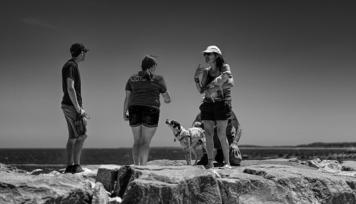 street bw scituate boston area usa landscape situation people funny dogs america lighthouse rocks walking