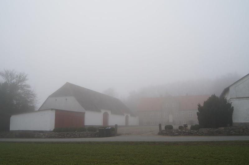 Tjoernbjerg-i-taagen-februar-2019 (1)