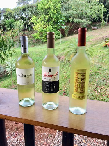 Torrontes Tasting Flight, Quebradas, Costa Rica