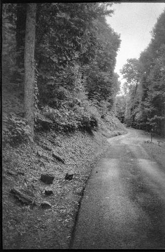 roadway road singlelane stones pavement lakeygapheights blackmountain northcarolina olympusxa fomaretropan320 hc110developer 35mm 35mmfilm film blackandwhite monochrome monochromatic landscape