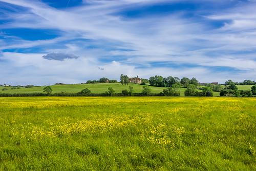 ampthill bedfordshire buttercups greensand houghtonhouse housebeautiful johnbunyan pilgrimsprogress