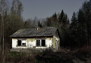 the abandoned house in the forest