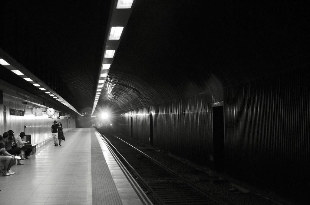 El tren que nos lleva.