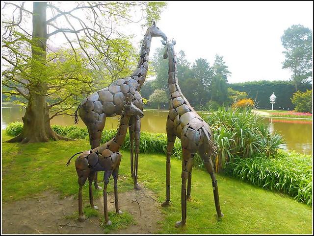 Ornamental Giraffes ..