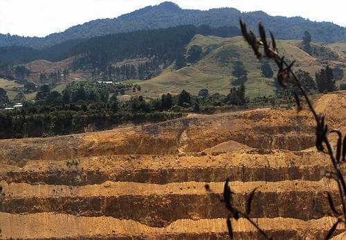 newzealand gold mine waihi trees green grass landscape hole earth hill pit hillside flax harakeke