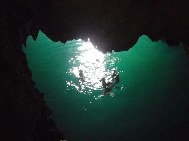 Noria Cenote Swim