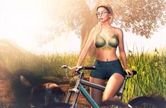 FabFree:  Summer Shenanigans