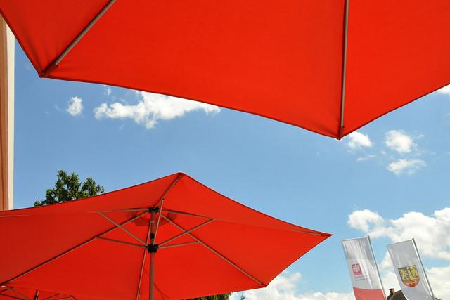 Juni 2019 ... Café beim Altenpflegeheim ... Rüblikuchen, Möhrenkuchen, Karottenkuchen ... Foto: Brigitte Stolle