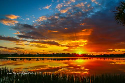 sun sunset sunburst pond lake water landscape sky clouds cloudy weather nature mothernature outdoors grass rays sunrays fortpierce florida usa