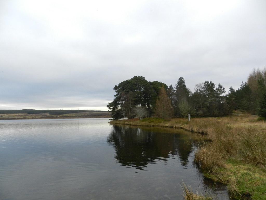So calm, Loch Duntelchaig, near Dunlichity, Strathnairn, Feb 2019