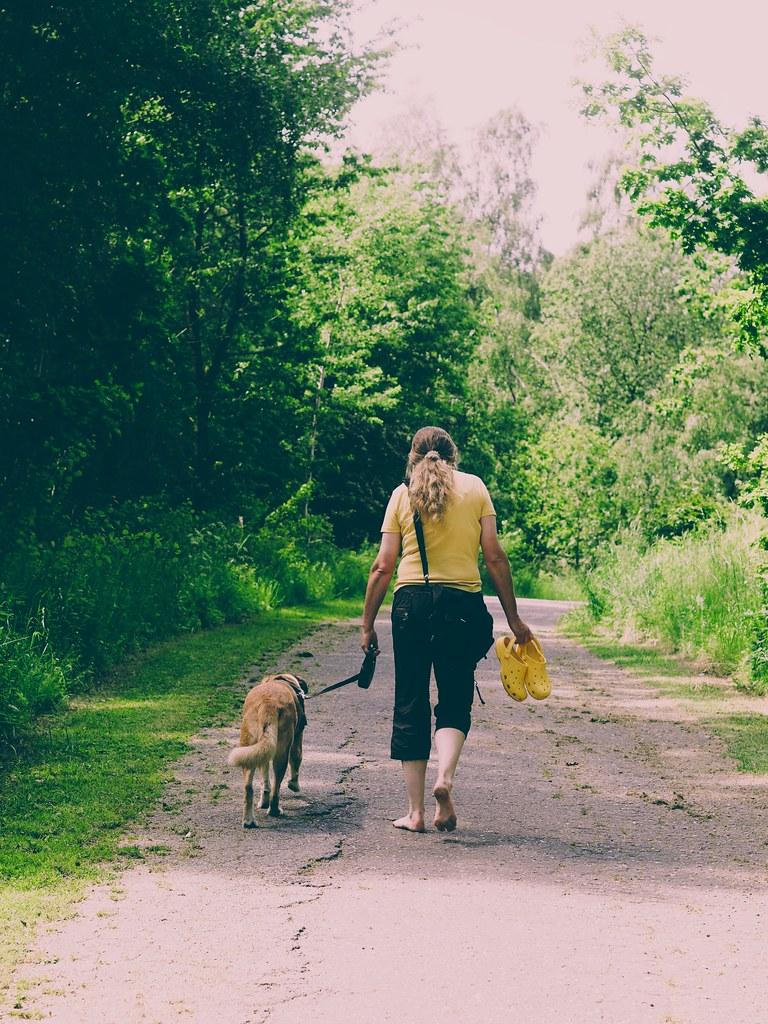 Frau mit Hund - 2. Juni 2019 - Tarbeker Moor - Schleswig-Holstein - Deutschland