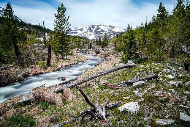Ouzel Creek - Wild Basin