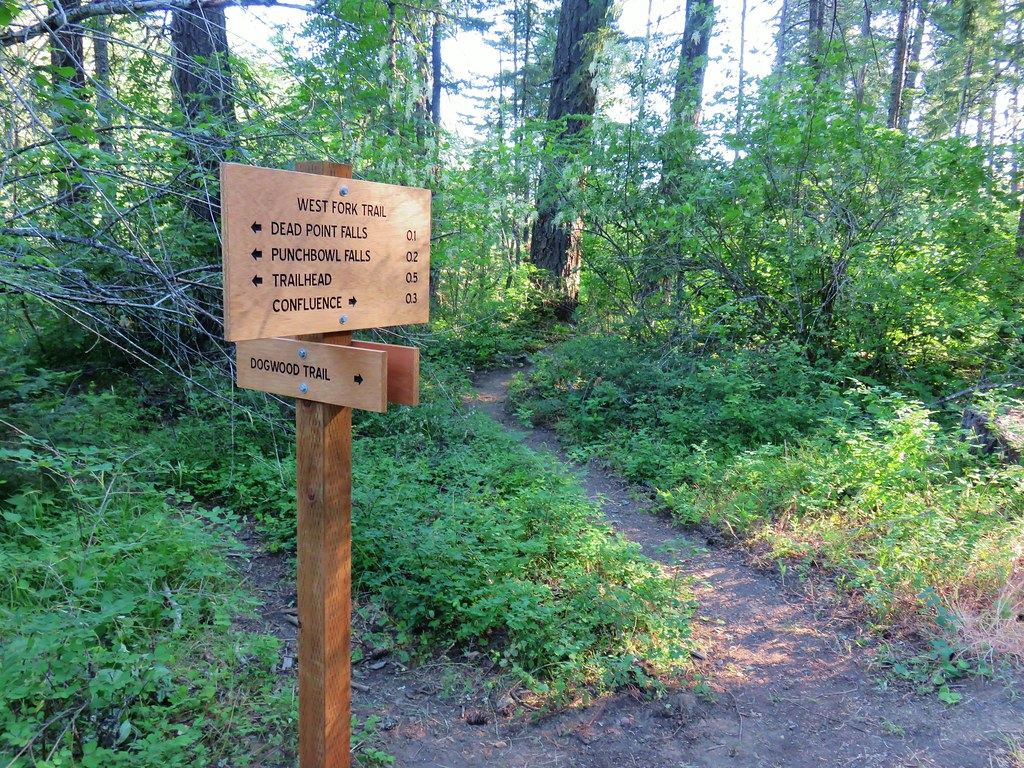 Trail junction in Punchbowl Falls Park