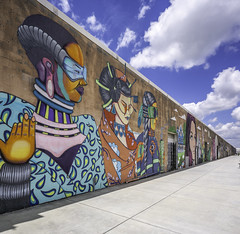 Art Wall Houston