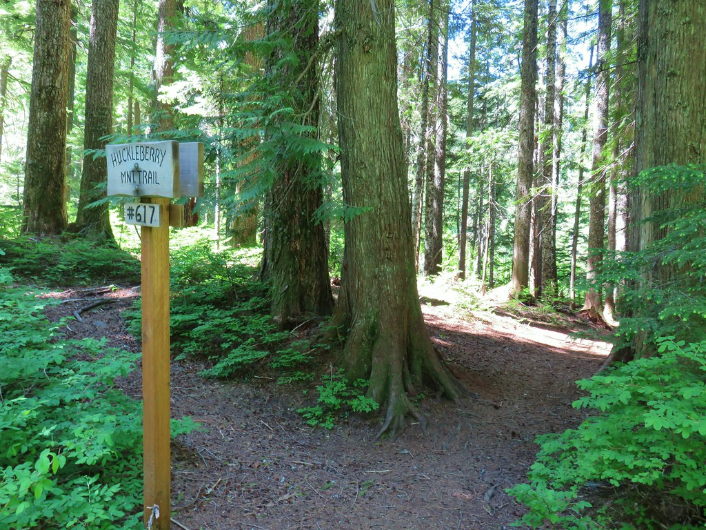 Lakeshore Trail junction with the Huckleberry Mountain Trail