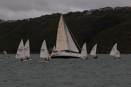 <p>Many different classes having a sail!</p>