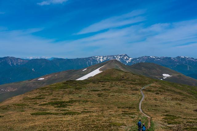振り返り平標山・・・背後の苗場山と北アルプスが感動的