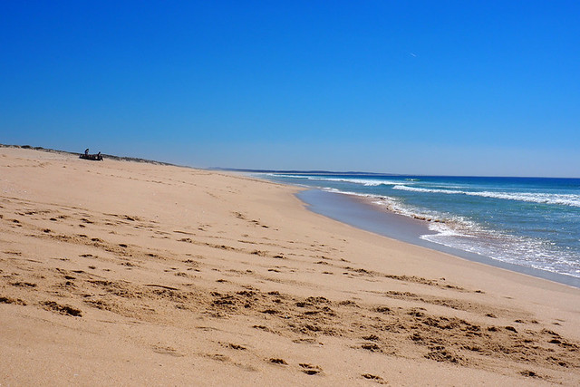 Comporta beach, Alentejo, March